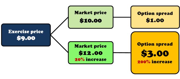 Option-leverage-infographic